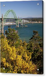 Or, Newport, Yaquina Bay Bridge Acrylic Print