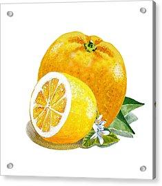 Orange And Lemon Citrus Bunch Acrylic Print by Irina Sztukowski