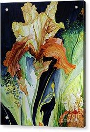 Orange And Yellow Iris Acrylic Print
