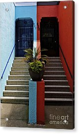 Acrylic Print featuring the photograph Orange - Blue With Plant Between by Sherry Davis