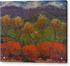 Orange Bushes Acrylic Print