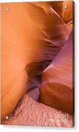 Orange Canyon Acrylic Print by Bryan Keil