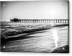 Orange County California Picture Of Balboa Pier  Acrylic Print by Paul Velgos