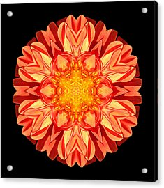 Orange Dahlia Flower Mandala Acrylic Print