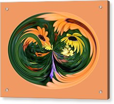 Orange Daisy Acrylic Print