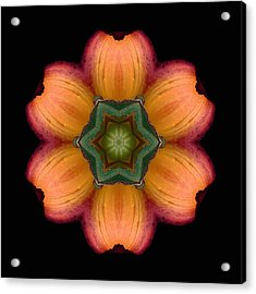 Acrylic Print featuring the photograph Orange Daylily Flower Mandala by David J Bookbinder