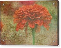 Orange Floral Fantasy Acrylic Print by Kay Novy