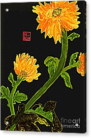 Orange Flowers  Chinese Watercolor Art Acrylic Print