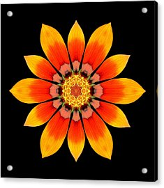 Acrylic Print featuring the photograph Orange Gazania I Flower Mandala by David J Bookbinder