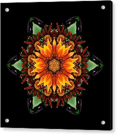 Acrylic Print featuring the photograph Orange Gazania IIi Flower Mandala by David J Bookbinder