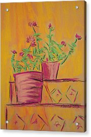 Orange Geraniums Acrylic Print by Marcia Meade