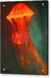 Orange Jellies Acrylic Print