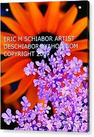 Orange Lavender Flower Acrylic Print by Eric  Schiabor