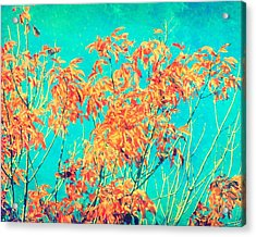 Orange Leaves And Turquoise Sky  Acrylic Print