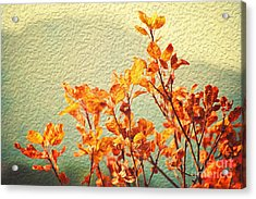 Acrylic Print featuring the photograph Orange Leaves by Yew Kwang
