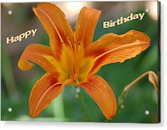 Orange Lily Birthday 1 Acrylic Print by Aimee L Maher Photography and Art Visit ALMGallerydotcom