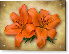 Orange Lily Acrylic Print by Jane McIlroy