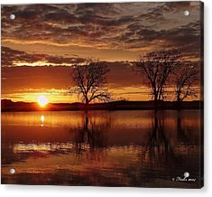 Acrylic Print featuring the photograph Orange Morning by Fiskr Larsen