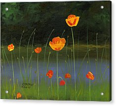 Orange Poppies Acrylic Print by Cecilia Brendel
