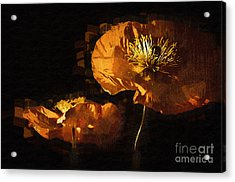 Orange Poppies Two Acrylic Print by Kirt Tisdale