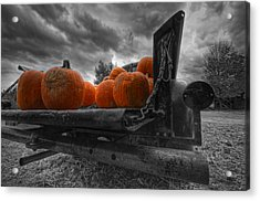 Orange Pumpkins Acrylic Print by Mike Horvath