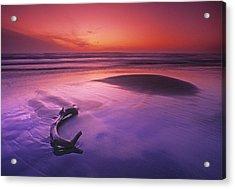 Orange & Purple Cast, Oregon Coast Acrylic Print