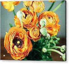 Orange Ranunculus Bouquet Acrylic Print by Nastasia Cook