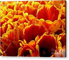 Orange Sea Acrylic Print by Lauren Leigh Hunter Fine Art Photography