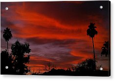 Orange Sky Acrylic Print by Chris Tarpening