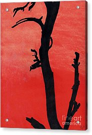 Acrylic Print featuring the drawing Orange Sunset Silhouette Tree by D Hackett