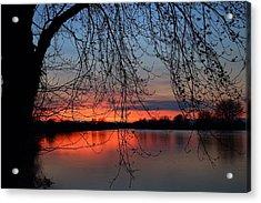 Acrylic Print featuring the photograph Orange Sunset by Lynn Hopwood