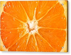 Orange  Acrylic Print by Tom Gowanlock