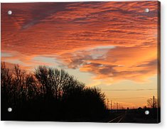 Orange Tracks Acrylic Print by Cary Amos