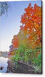 Orange Trees Acrylic Print by Nur Roy