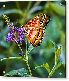Orange White And Black Stripes On Purple Acrylic Print by Karen Stephenson