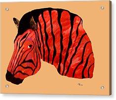 Orange Zebra Acrylic Print by Andrew Petras