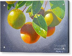 Oranges Acrylic Print by Carey Chen