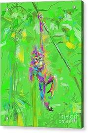 Orangutan Baby In Color Acrylic Print by Go Van Kampen