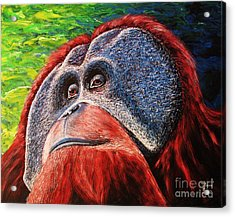 Acrylic Print featuring the painting Orangutan by Viktor Lazarev