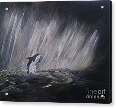Orca Acrylic Print by Isabella F Abbie Shores FRSA