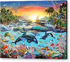 Orca Paradise Acrylic Print by Adrian Chesterman