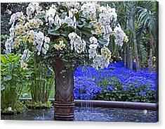 Orchid Fountain Acrylic Print by Jennifer Nelson
