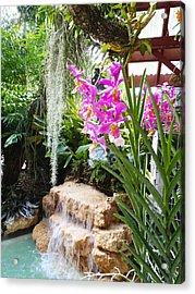 Orchid Garden Acrylic Print by Carey Chen