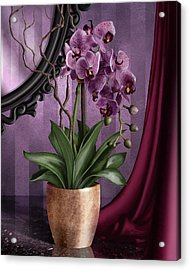 Orchid I Acrylic Print by April Moen