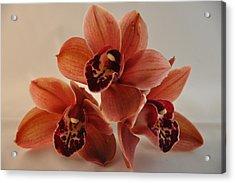 Orchid Pyramid Acrylic Print