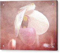 Orchid Softly Acrylic Print