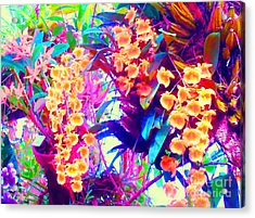 Orchid Splash Acrylic Print by Ann Johndro-Collins
