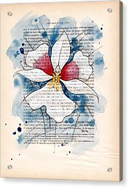 Orchid Study II Acrylic Print by Rudy Nagel