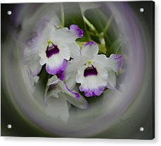 Orchid Wine Swirl Acrylic Print by Penny Lisowski