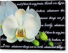 Orchids And Scripture Acrylic Print by Pattie Calfy
